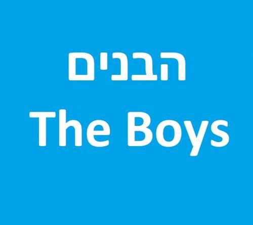 הבנים (The Boys) לצפייה ישירה אונליין - עונות 1-2 - פרקים מלאים